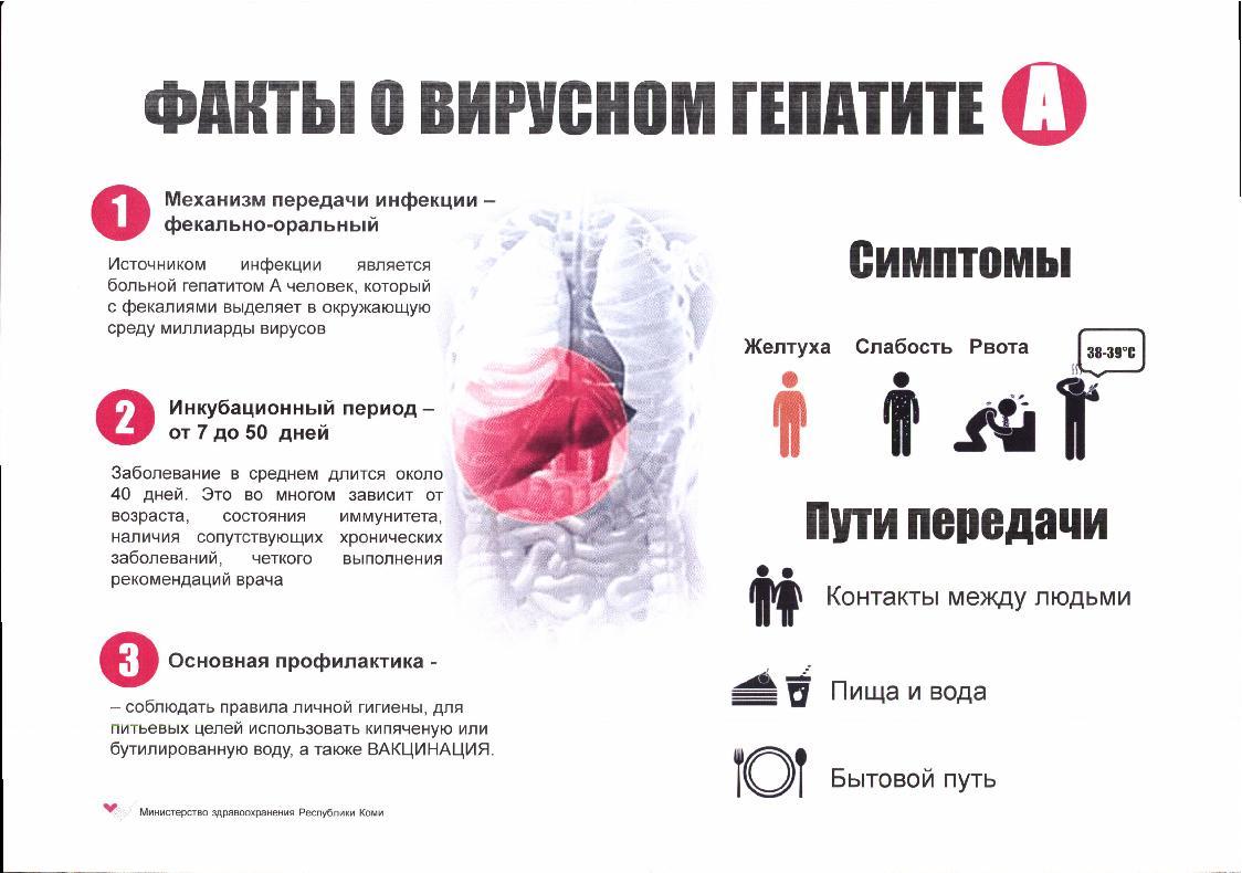Кровотечение при циррозе печени прогноз срока